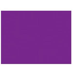 Docteur Alain CARRÉ